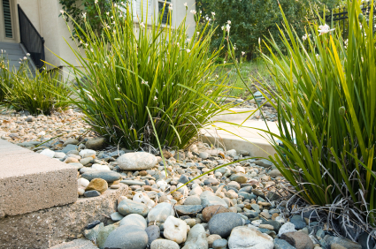 6 Low-Maintenance Landscaping Tips - Smart Landscaping ideas | COIT