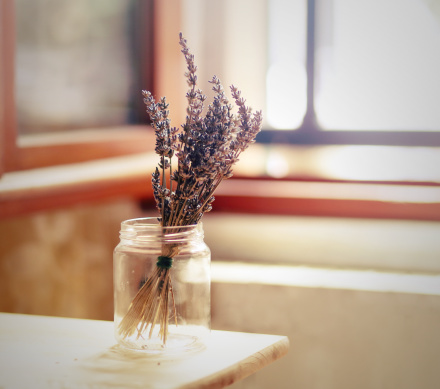 how to make your home smell fresh - COIT