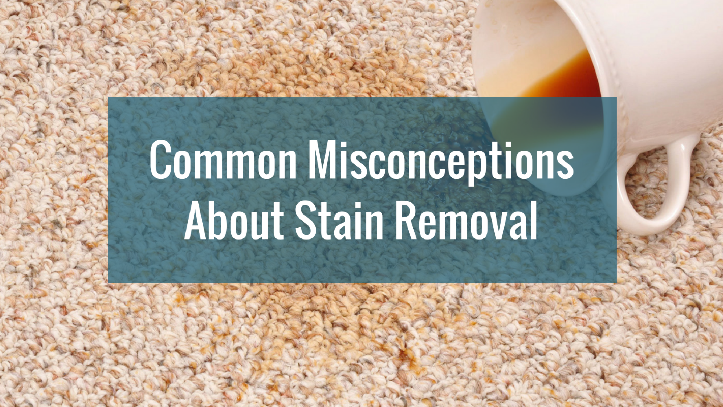 14 Common Misconceptions About Stain Removal