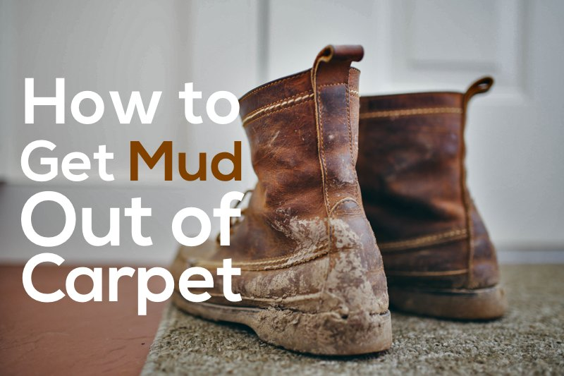 how to get mud out of carpet | COIT