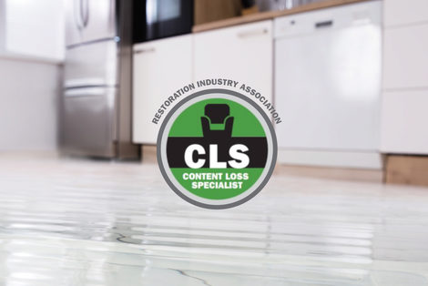 Content Loss Specialist Certification (CLS)