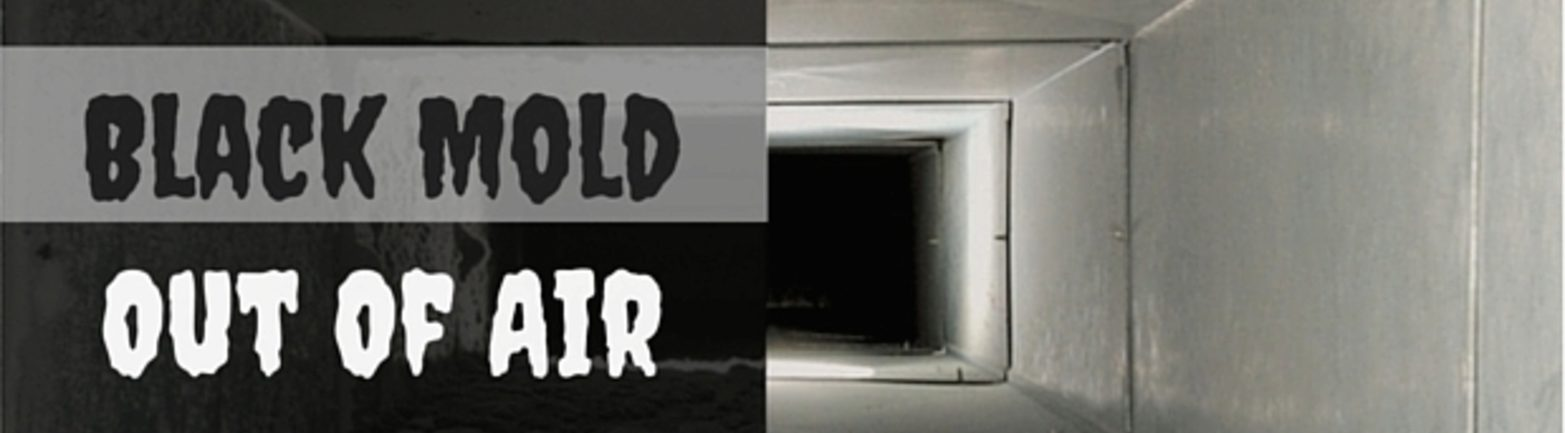 Preventing Treating Black Mold In Your Air Ducts