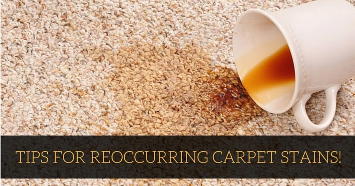 The Cause Of Reearing Carpet Stains Coit